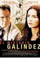 Affiche du film Galindez