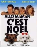 Affiche du film Allo maman, c'est No�l