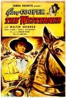 Affiche du film Le Cavalier du Desert