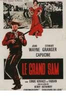 Le Grand Sam, le film