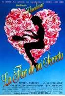 La fleur de mon secret, le film