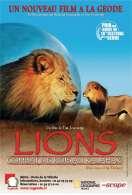 Lions : combat de rois au Kalahari, le film