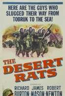 Affiche du film Les Rats du Desert