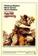 Affiche du film Deux Hommes dans l'ouest