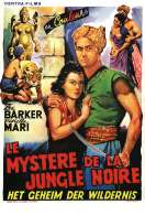 Le Mystere de la Jungle Noire, le film