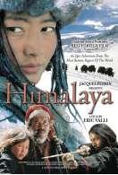 Himalaya, l'enfance d'un chef, le film