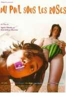 Affiche du film Du poil sous les roses
