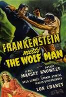 Affiche du film Frankenstein Rencontre le Loup Garou