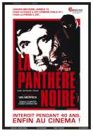 Affiche du film La Panth�re noire