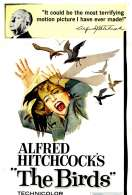 Affiche du film Les oiseaux