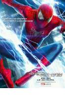 Affiche du film The Amazing Spider-Man : Le Destin d'un h�ros