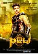 Affiche du film Puli