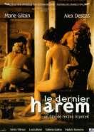 Affiche du film Le dernier harem