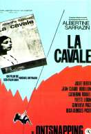 Affiche du film La cavale