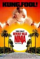 Affiche du film Le Ninja de Beverly Hills