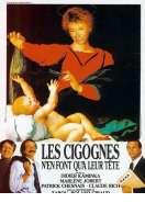 Affiche du film Les cigognes n'en font qu'� leur t�te