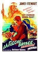 Affiche du film La fl�che bris�e