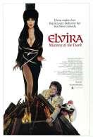 Elvira, ma�tresse des t�n�bres, le film