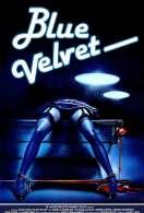 Blue velvet, le film