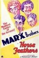 Affiche du film Plumes de cheval