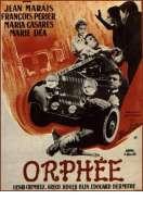 Orphée, le film