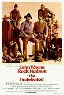 Affiche du film Les Geants de l'ouest