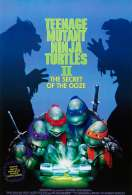Les Tortues Ninja Ii, le film