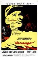 Affiche du film Le Pays de la Haine
