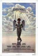 Affiche du film Le ciel peut attendre