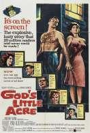 Affiche du film Le Petit Arpent du Bon Dieu