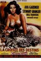 Affiche du film La crois�e des destins
