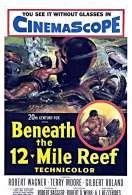 Affiche du film Temp�te sous la mer