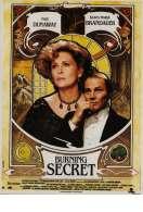 Affiche du film Burning secret