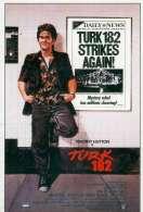Affiche du film Turk 182 !