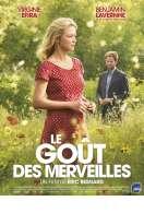 Affiche du film Le Go�t des merveilles