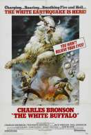 Affiche du film Le bison blanc