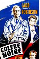 Affiche du film Colere Noire