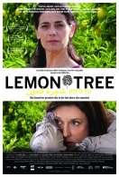 Affiche du film Les Citronniers