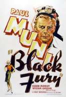 Affiche du film Black Fury