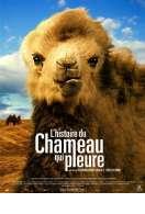 L'histoire du chameau qui pleure, le film