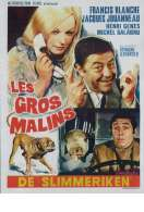 Affiche du film Les Gros Malins