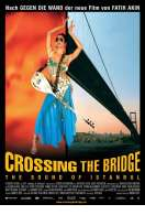 Crossing the bridge, le film