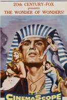 Affiche du film L'egyptien