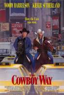 Affiche du film Deux Cowboys a New York