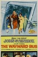Affiche du film Les Naufrages de l'autocar