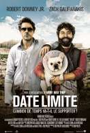 Affiche du film Date limite