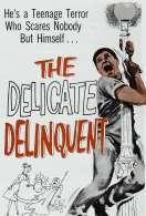 Affiche du film Le Delinquant Involontaire