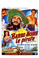 Affiche du film Barbe Noire le pirate