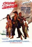 Affiche du film Un cyclone � la Jama�que