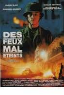 Affiche du film Des Feux Mal Eteints